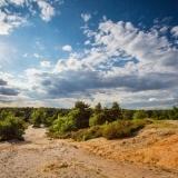 Nabij chalet het Nationaal natuurpark de Hoge Kempen
