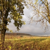 natuurlandschap nabij Frensjerhofke