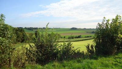 Frensjerhofke omgeving natuurlandschap